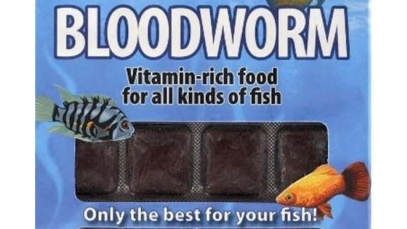 Bloodworm 100 g / 24 blisters