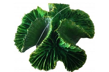 Πράσινο Coral